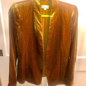 LOFT Velvet gold blazer